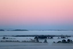 blanket-of-fog