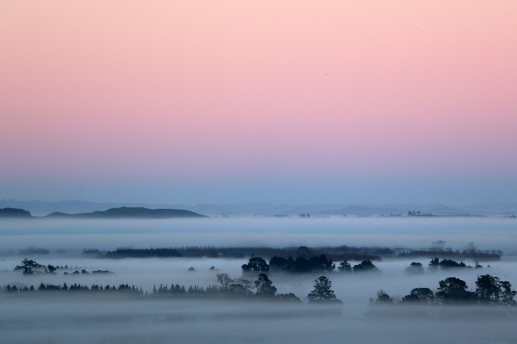 blanket-of-fog