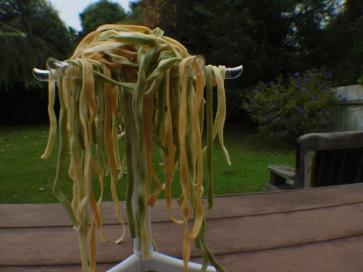 C-Spaghetree