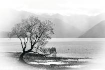 a-lake-wanaka