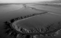 c-low_tide