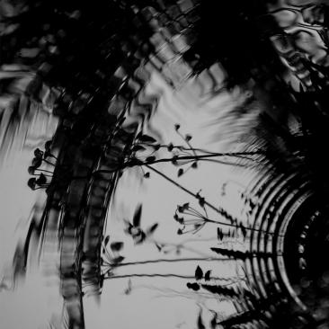 a-ripples