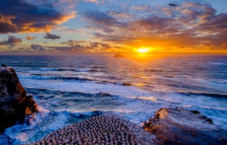A-Sunset over Muriwai