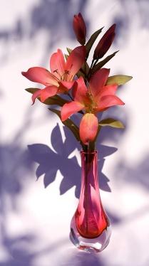 b-lilies-in-silk