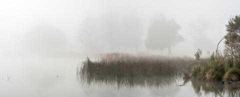 C-Winter_morning_at_Hamilton_Lake