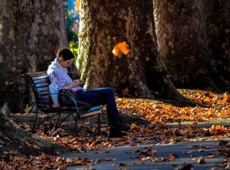 c-Autumn_in_the_park (1 of 1)