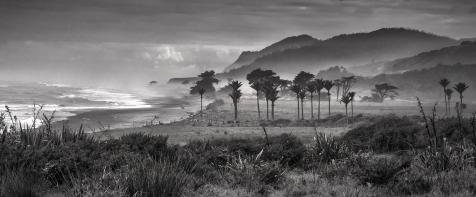 A-Karamea Coast Landscape