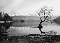 c-Contrast at Wanaka Lake