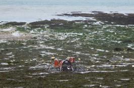 C-Drum solo on the beach