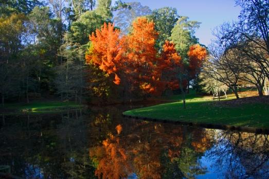 b-highlights_of_autumn