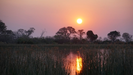 c-Sunset over Okavanga Delta