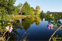 c-terrys-pond