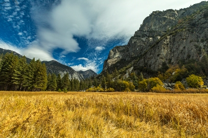 a-Kings Canyon The Meadow in Autumn