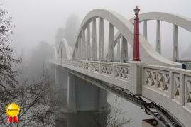 A-Tis Season of Fog
