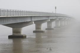 a-Winter Fog