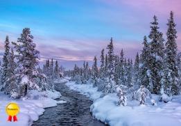 A-Winter wonderland