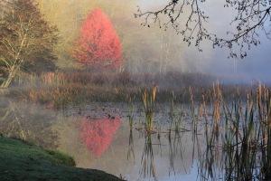 b-Season_of_mists