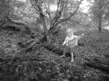 c-exploring grannies forest