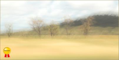 B-Australian-Haze
