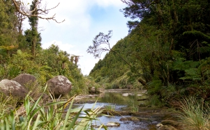 b-Exploring-the-Wairere-Stream