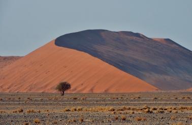 b-Namibian_Sand_Dunes_1000_yrs_old