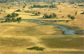 b-Okavango-Delta-Botswana