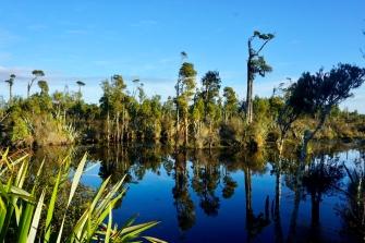 b-Wetlands_West_Coast
