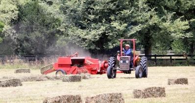 c-make hay while the sun shines