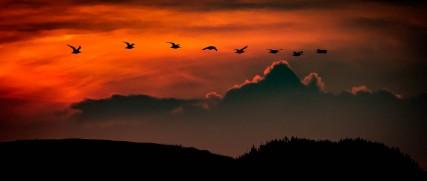 a-Miranda Sunset