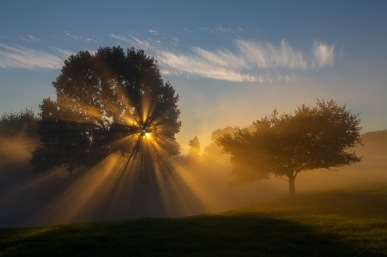 a-Sunset-in-the-fog-4408