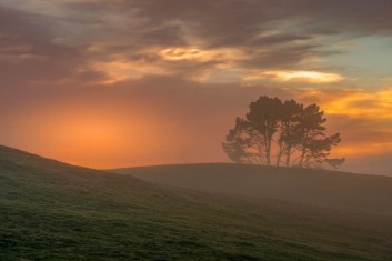 b-Foggy Waikato Sunrise.