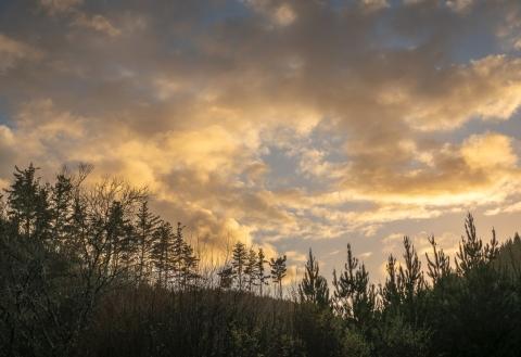 b-King Country_Sunrise