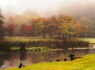 c-The_Colours_of_Autumn