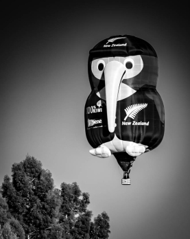 a-Kiwi Balloon-2