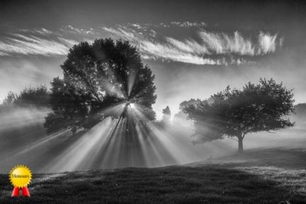 a-sunset on the farm-