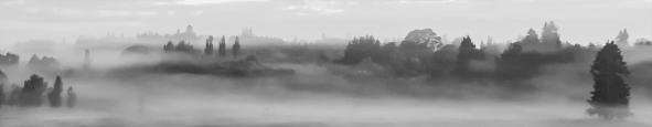 a-waikato_fog