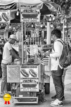 b-Hot Dog Stall NY