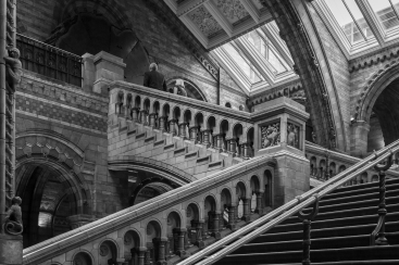 b- Staircase