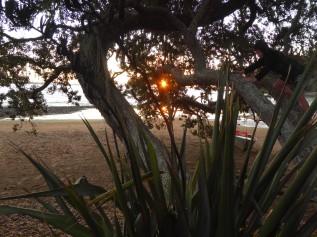 c-Hihi Beach