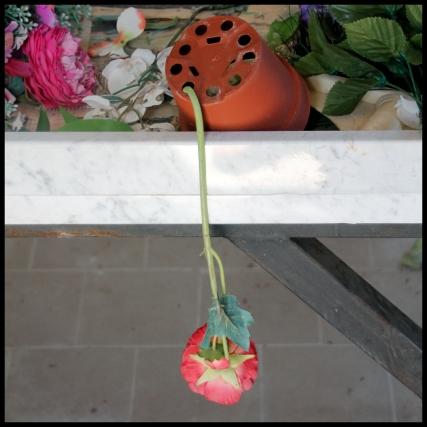 C-Sala_preparazione_fiori_cimitero
