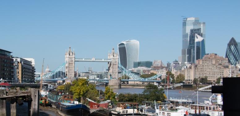 c-Tower Bridge- Floating Gardens