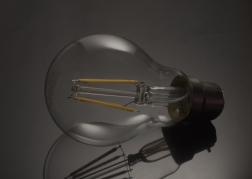 a-delicate_light