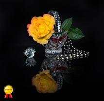 a-Peace Rose-H