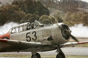 a-The Aviator