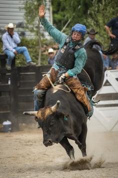 b-Ride_him_cowboy!