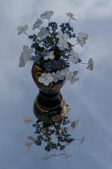 c-Hydrangea_in_Grandmother's_Vase