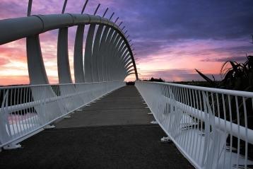 b-Taranaki_Te_Rewa_Rewa_Bridge