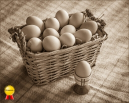 A-Eggs_Honours