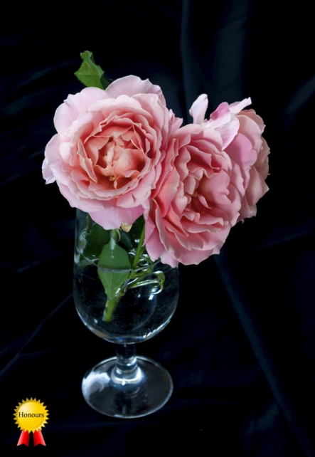 a-Roses_Honours
