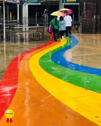 b-Rainbow-Connection_Honours